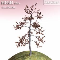 tree 021 sere tree 3D Model
