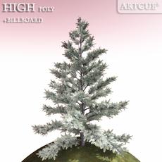 tree 022 silver fir 3D Model