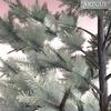 01 05 26 102 tree 022 zz 4