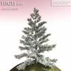 01 05 35 754 tree 022 main 4