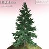 01 05 35 888 tree 023 main 4