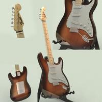 3D Model Fender Stratocaster 3D Model
