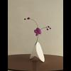 01 15 03 987 vase4 room final 00000 4