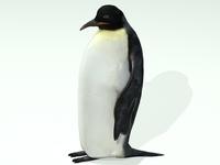 Penguin 3D Model