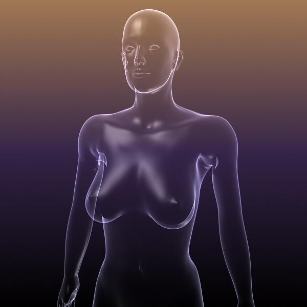 Female Body for Anatomy Renders 3D Model