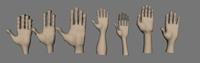 Hands Pro 1.0 3D Model