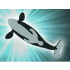 01 19 33 121 orca 04 4