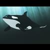 01 19 33 574 orca 01 4