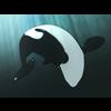 01 19 33 79 orca 03 4