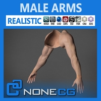 Free Adult Male Arms and Hands 3D Model