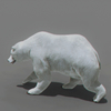 01 31 00 706 bear polar 02 4