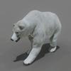 01 31 01 391 bear polar 05 4
