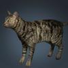 01 31 13 19 cat 01 0001 4