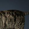 01 31 14 81 cat 01 0009 4