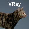 01 31 16 658 cat vray 04 4