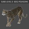 01 31 18 542 cheetah 04 4