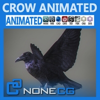 Animated Crow