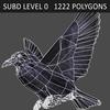 01 31 20 222 crow 06 4