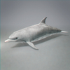 01 31 27 741 dolphin 05 4