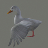 01 31 33 747 duck white 03 4