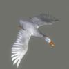 01 31 33 977 duck white 05 4