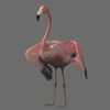 01 31 42 560 flamingo 06 4
