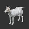 01 31 50 541 goat 0004 4