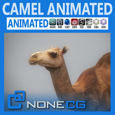 Animated Camel 3D Model