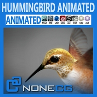 Animated Hummingbird