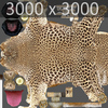 01 32 39 542 leopard 04 4
