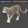 01 32 39 986 leopard 08 4