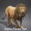 01 33 25 736 lion alpha 01 4