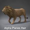 01 33 25 782 lion alpha 02 4