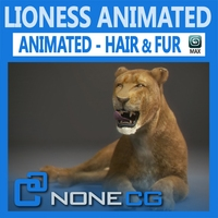 Animated Lioness 3D Model