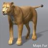 01 33 27 99 lioness 12 4
