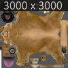 01 33 31 532 lioness 19 4