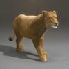 01 33 31 906 lioness 22 4