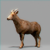 01 33 40 557 goat 01 4