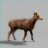 01 33 40 635 goat 02 4