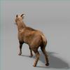 01 33 41 114 goat 05 4