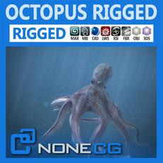 Rigged Octopus 3D Model