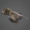 01 33 46 62 owl 0001 4