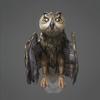 01 33 46 677 owl 0008 4