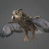 01 33 47 501 owl 0002 4