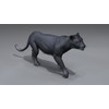 01 33 52 233 panther 02 4