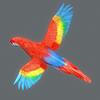 01 33 56 949 parrot2 0004 4