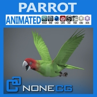 Animated Wild Parrot