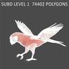 01 34 15 343 parrot2 0009 4