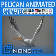 Animated Pelican