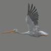 01 34 17 543 pelican 04 4